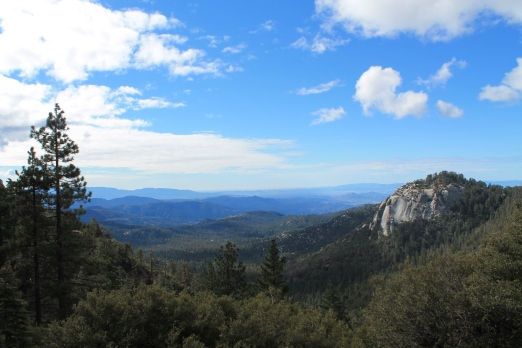 Idyllwild Hike - Humber Park to Saddle Junction